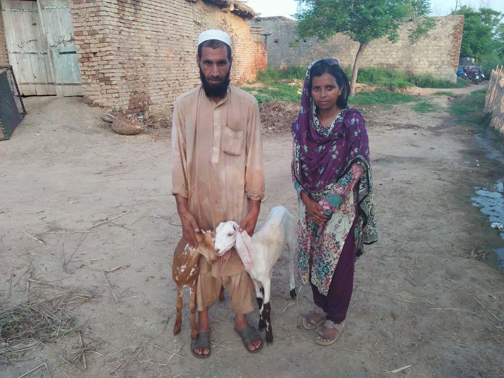 Muzamil Khan 2 Goats Baghaan