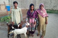 Nisar Khan 2 Goats Hattar