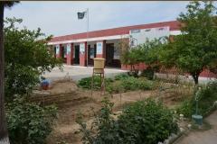 Shazia (Hattar Boys School)