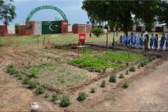 Zafran (Dullah Girls School)