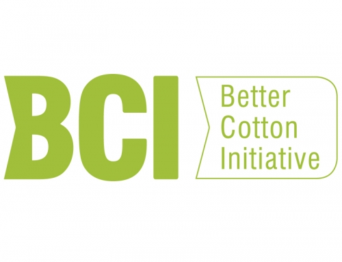 Lok Sanjh Better Cotton Initiative
