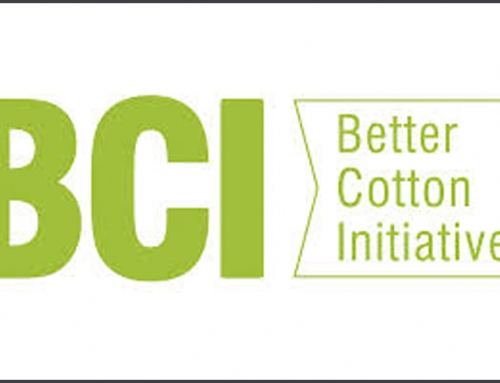 Lok Sanjh has launched Better Cotton Initiative